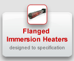 Flanged Immersion Heaters